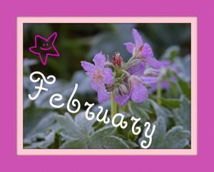 flowerfebruary